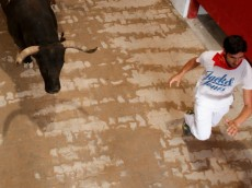 PAMPLONA, SPAIN - JULY 14:  A reveller runs with a Miura's fighting bull along the passage way into the bullring during the ninth day of the San Fermin Running Of The Bulls festival on July 14, 2013 in Pamplona, Spain. The annual Fiesta de San Fermin, made famous by the 1926 novel of US writer Ernest Hemmingway 'The Sun Also Rises', involves the running of the bulls through the historic heart of Pamplona, this year for nine days from July 6-14.  (Photo by Pablo Blazquez Dominguez/Getty Images)