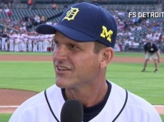 harbaugh_nerves