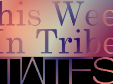 This Week In Tribe