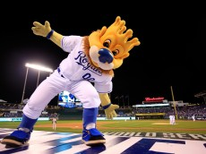 "KANSAS CITY, MO - OCTOBER 22:  ""Slugerrr"" the Kansas City Royals mascot performs during Game Two of the 2014 World Series against the San Francisco Giants at Kauffman Stadium on October 22, 2014 in Kansas City, Missouri.  (Photo by Jamie Squire/Getty Images)"