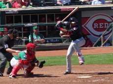 Erik Gonzalez bats in front of the festive looking Devin Mesoraco of Cincinnati. - Joseph Coblitz, BurningRiverBaseball